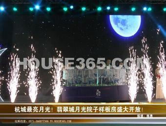 翡翠城视频图