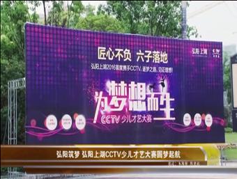 弘阳上湖视频图