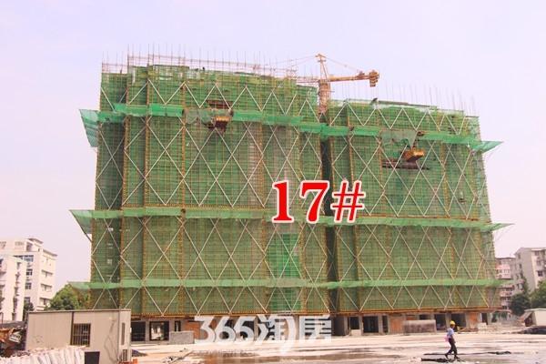 官山翰林8月工程进度(2016.08.23摄)