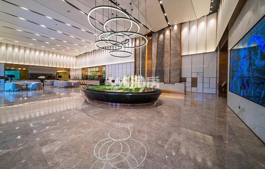 融信保利创世纪展厅沙盘实景图 2017年6月摄