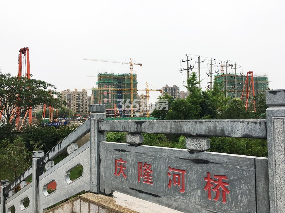 2017.6.25庆隆河桥上拍首开杭州金茂府