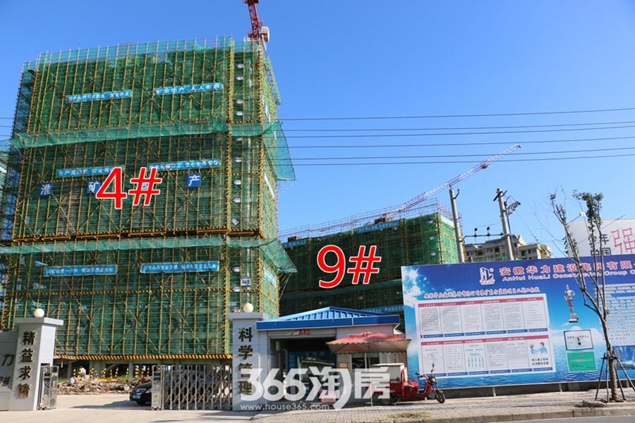 东方蓝海4#9#施工中(2017.8摄)