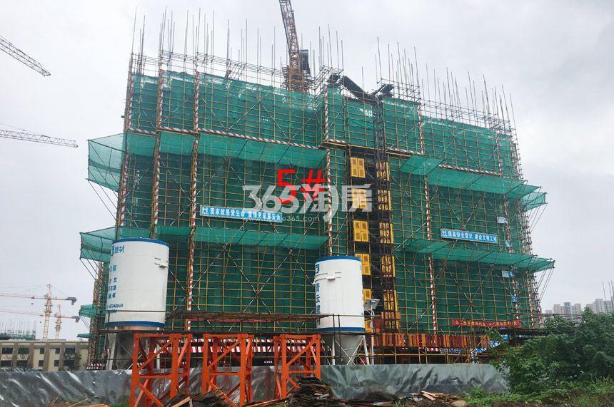 新城北宸紫郡5#工程进度实景图(9.4)