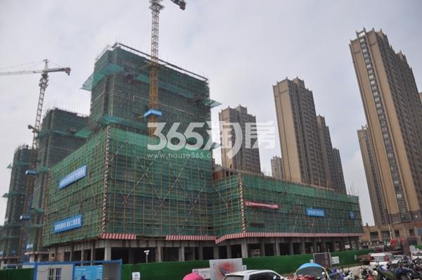 蚌埠国购广场-国购明珠 实景图