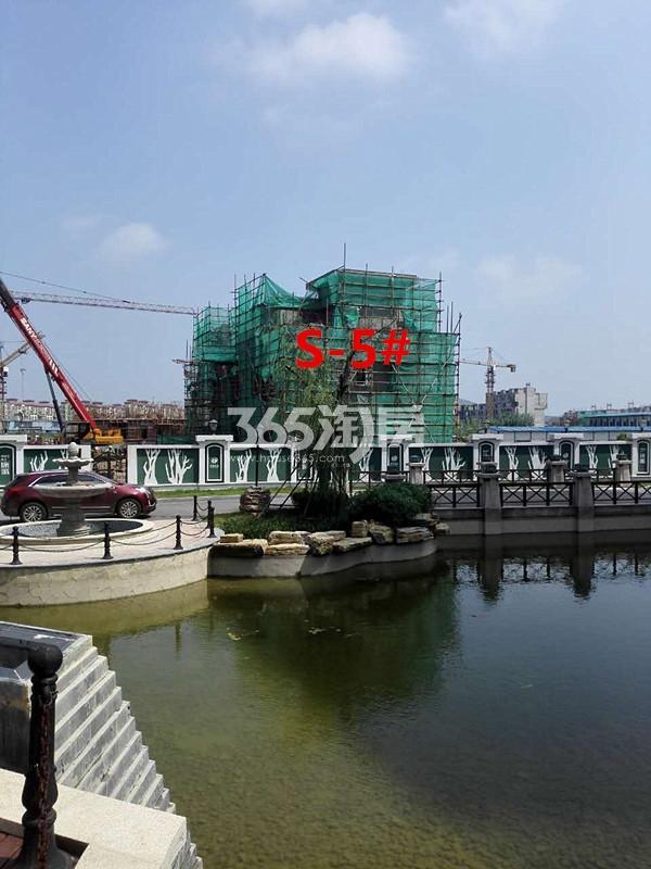 枫林天下康城双拼别墅5#楼在建实景图(9.11)
