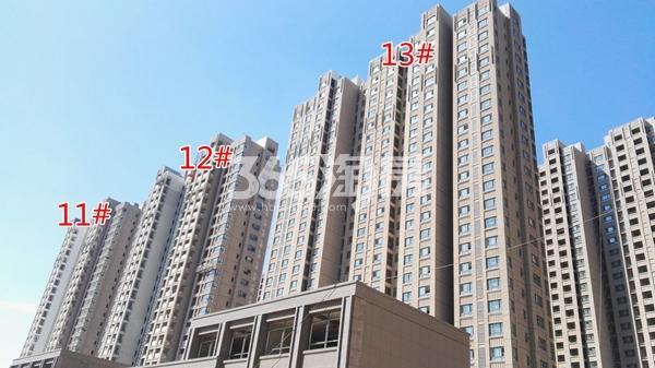 荣盛花语城云锦一期A11-13#工程实景图(9.14)